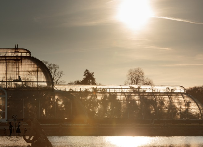 Kew Gardens Mar 2016_IMG_7633.jpg
