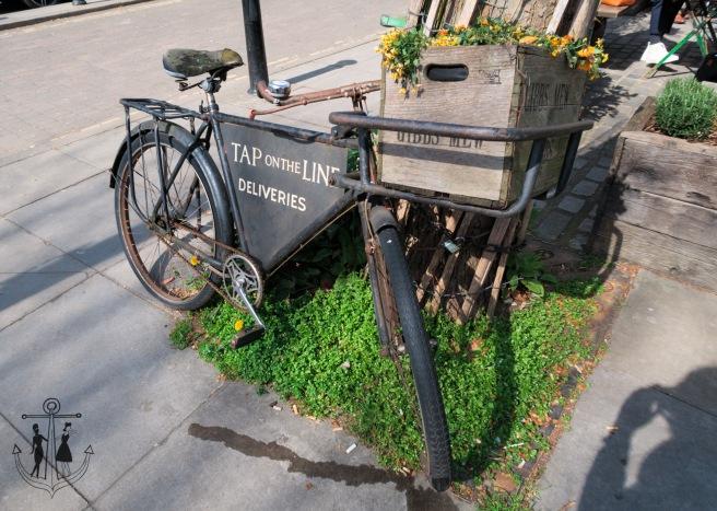Kew Gardens Apr 2017_IMG_1550.jpg