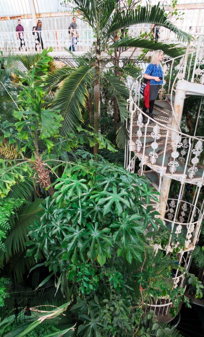 Kew Gardens Apr 2017_IMG_1562.jpg