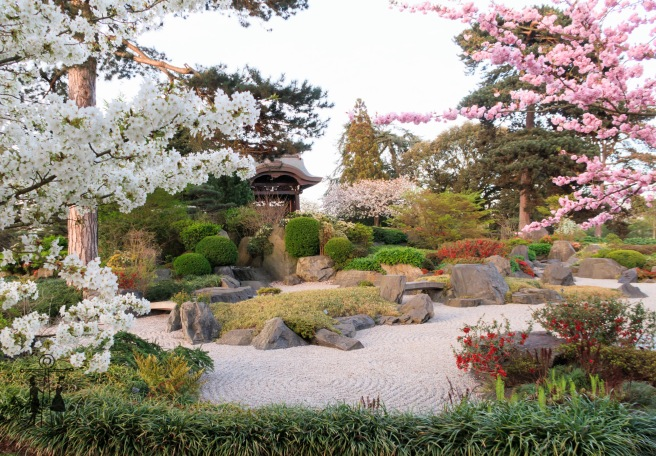 Kew Gardens Apr 2017_IMG_1632.jpg