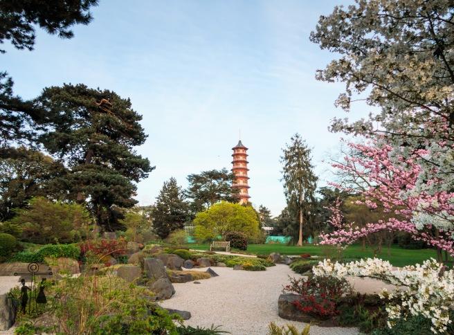 Kew Gardens Apr 2017_IMG_1633.jpg