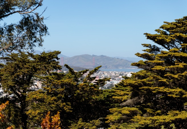 SanFrancisco 2018_IMG_5739.jpg