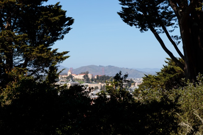 SanFrancisco 2018_IMG_5755.jpg